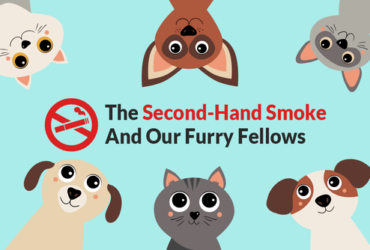 HAND-SMOKE-AND-OUR-FURRY-FELLOWS